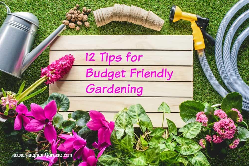 12 Budget Friendly Gardening Tips Gingham Gardens