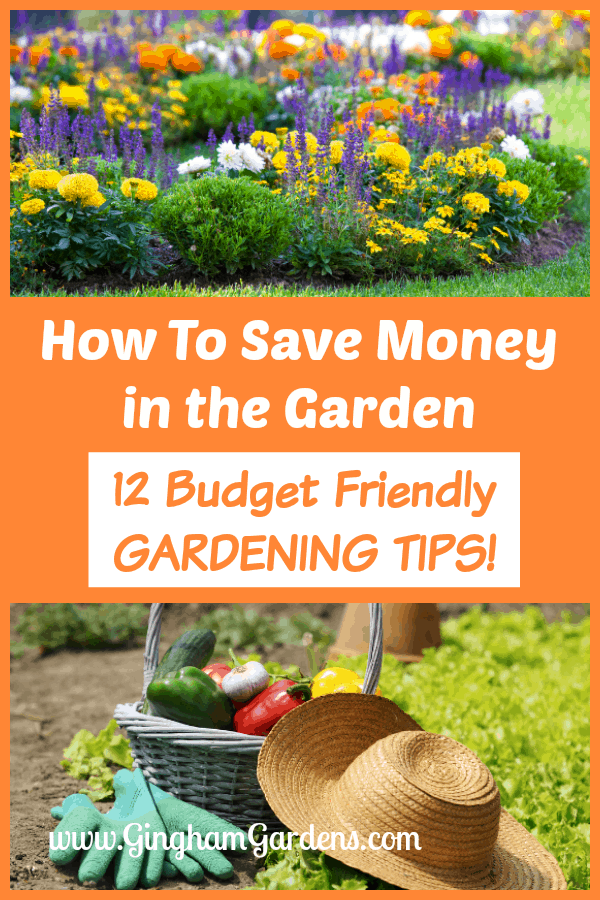 12 Budget Friendly Gardening Tips