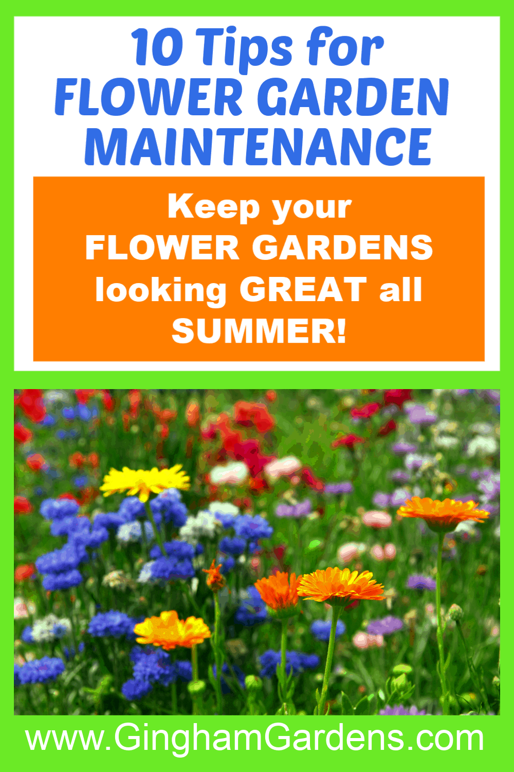 Image of Flowers with Text Overlay - 10 Tips for Flower Garden Maintenance