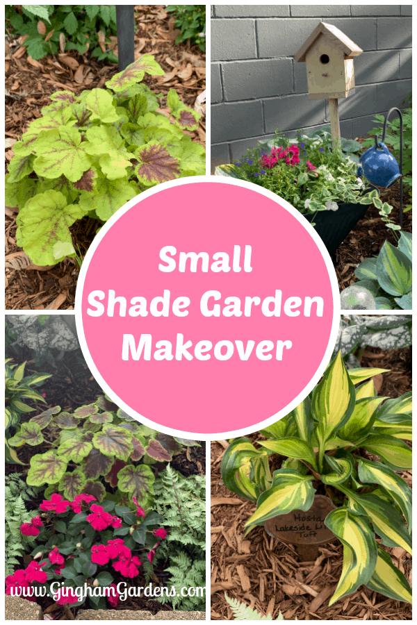Small Shade Garden Makeover
