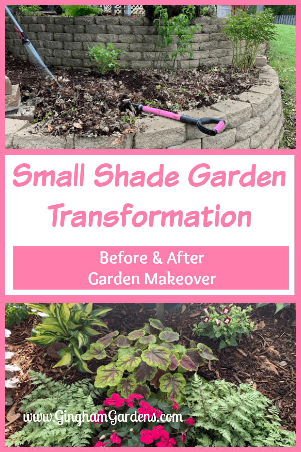 Small Shade Garden Transformation