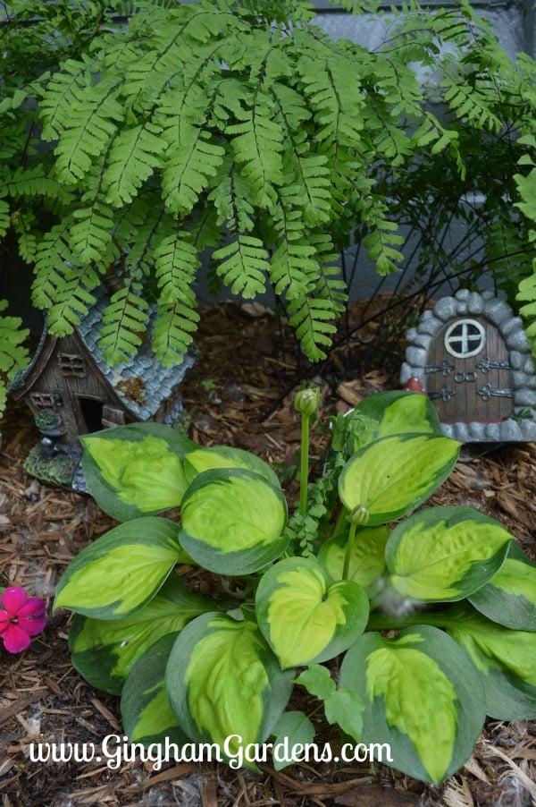Flower Garden Ideas For Small Spaces Gingham Gardens