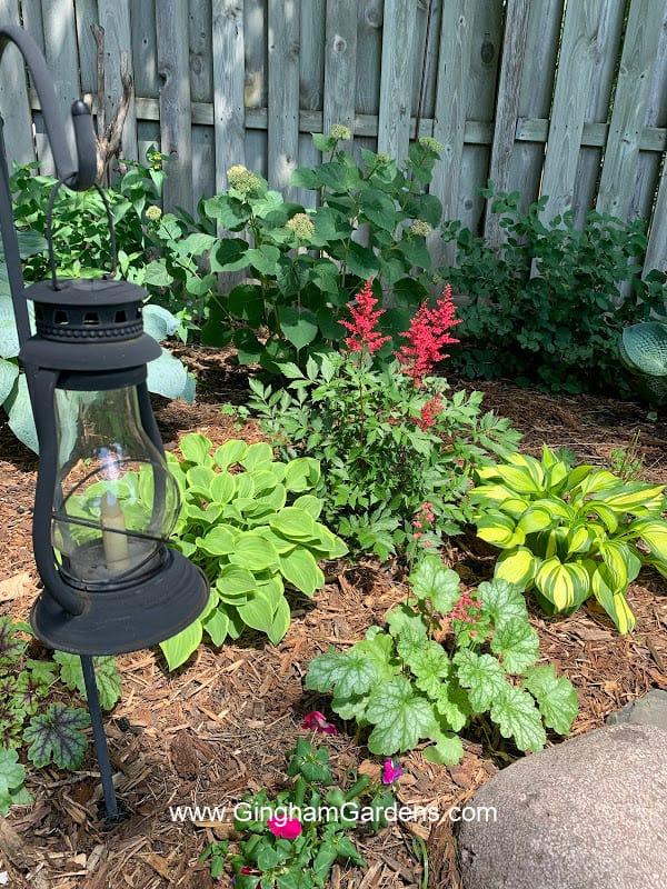 Image of a Shade Garden