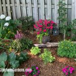 Shade Border and Junk Garden Vignettes