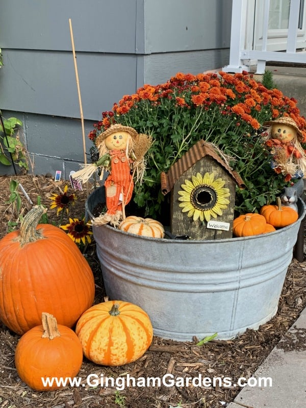 Fall Outdoor Vignette - Minnesota