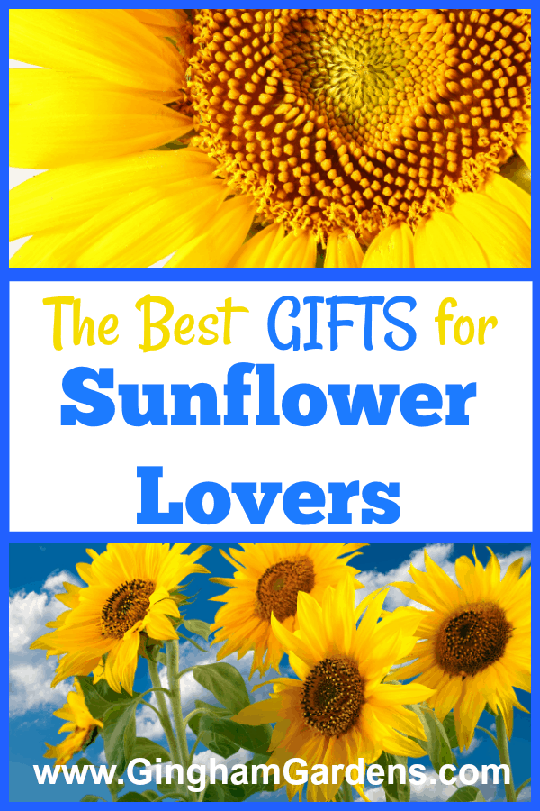 Gift Ideas for Sunflower Lovers