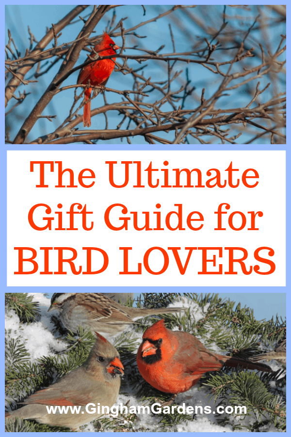 Gift Guide for Bird Watchers