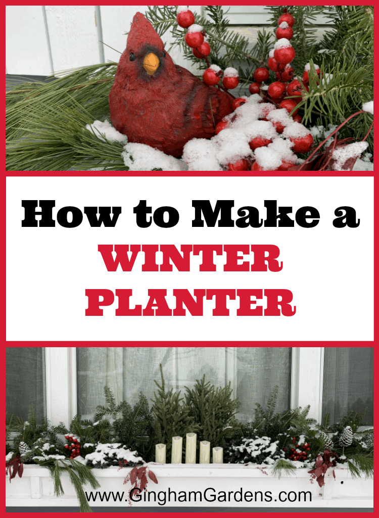 How to Make a Winter Planter