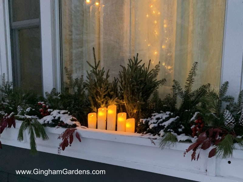 Winter Window Box in the Evening