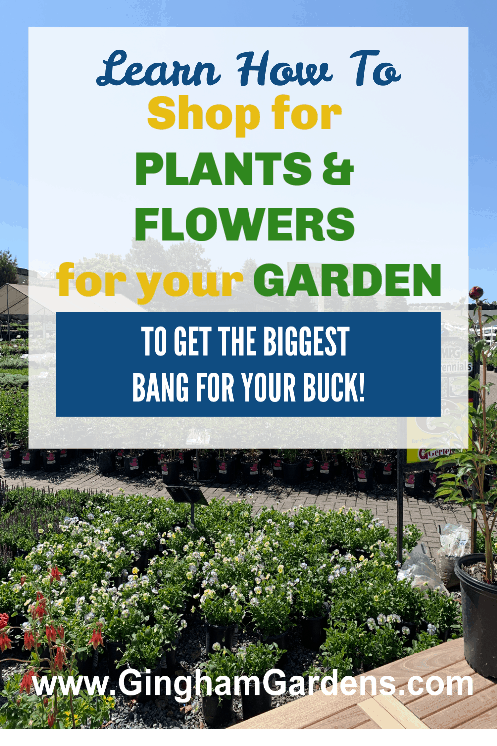 Garden Center with Text Overlay- How to Shop for Plants and Flowers for your Garden