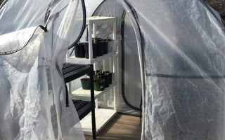 Pop-up Greenhouse