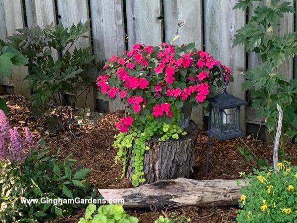 Flower Garden with Landscape Light