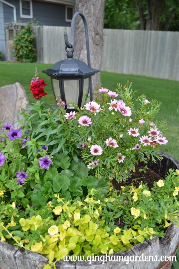 Flower Container with Solar Landscape Light