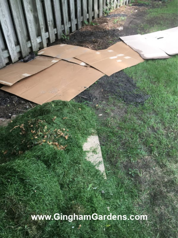 Lasagna Method for killing grass and weeds