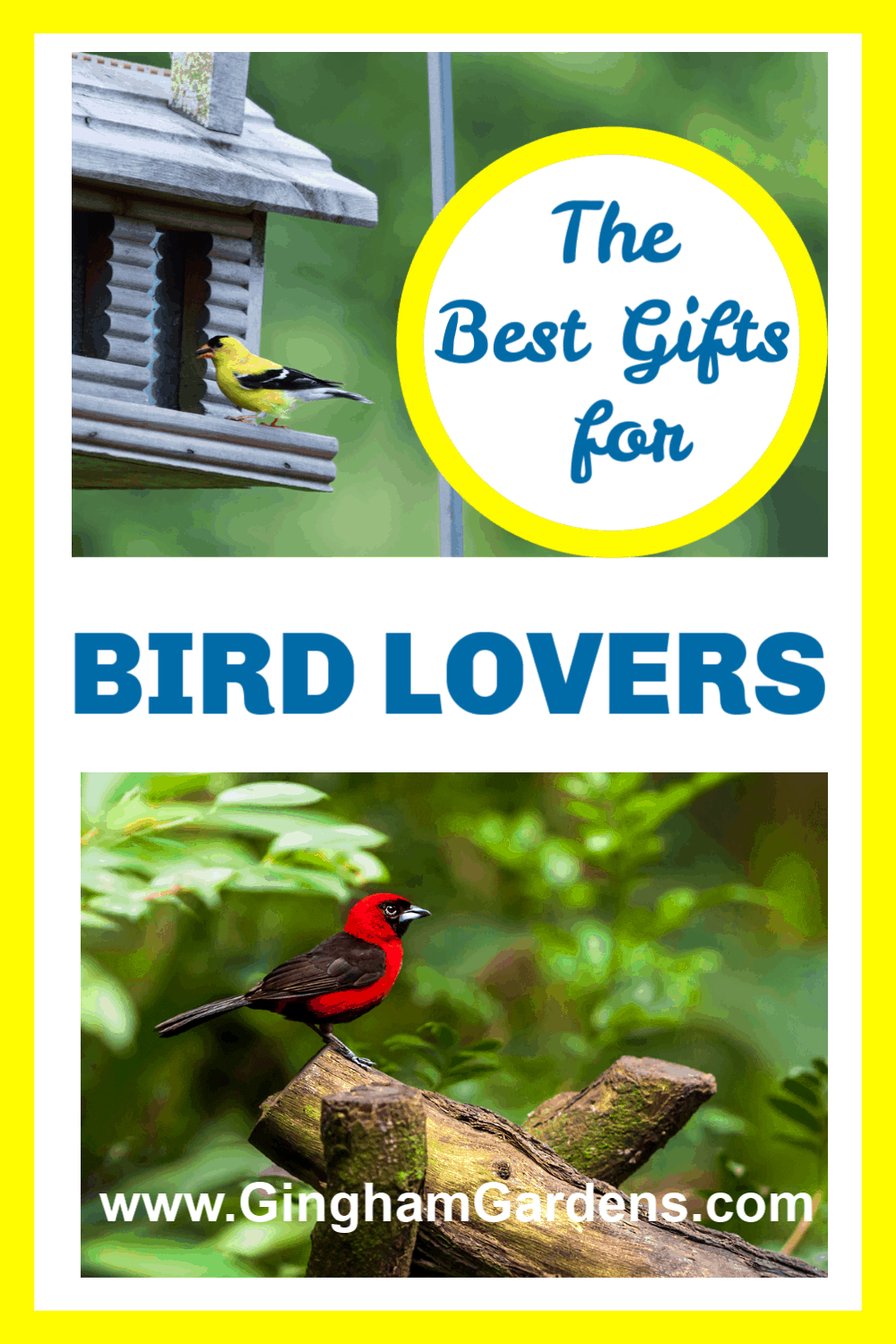 Images of Birds with Text Overlay - The Best Gifts for Bird Lovers