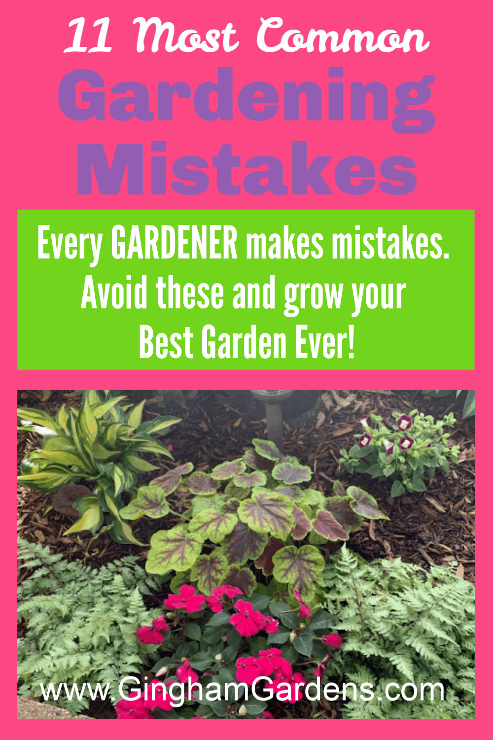 Image of a Garden with Text Overlay - 11 Most Common Gardening Mistakes