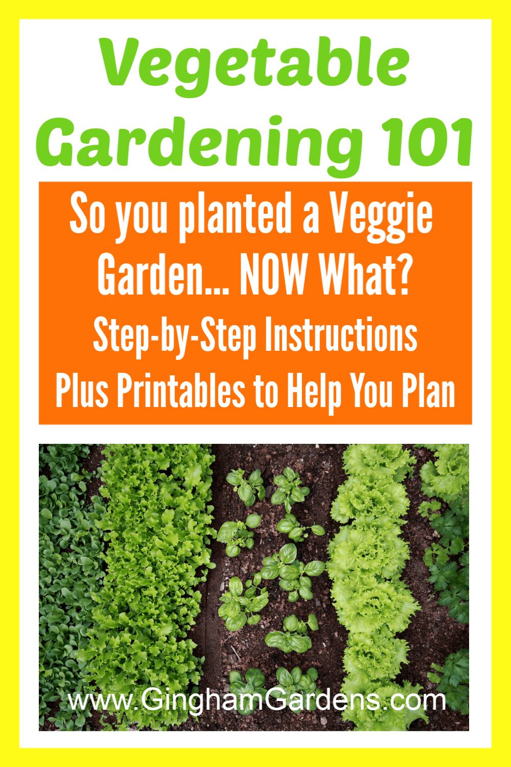 Image of Vegetable Garden with Text Overlay - Vegetable Gardening 101