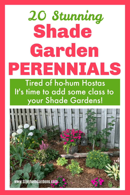 Image of a Shade Garden with text overlay - 20 Stunning Shade Garden Perennials