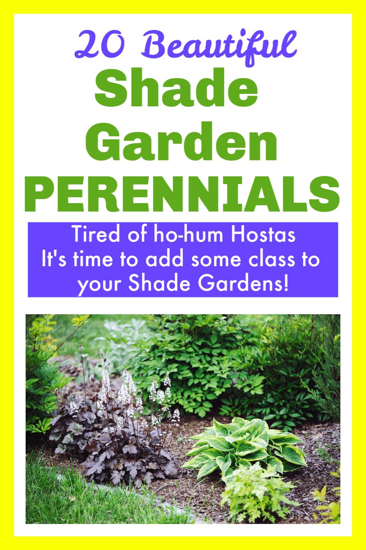Image of Shade Garden with Text Overlay - 20 Beautiful Shade Garden Perennials