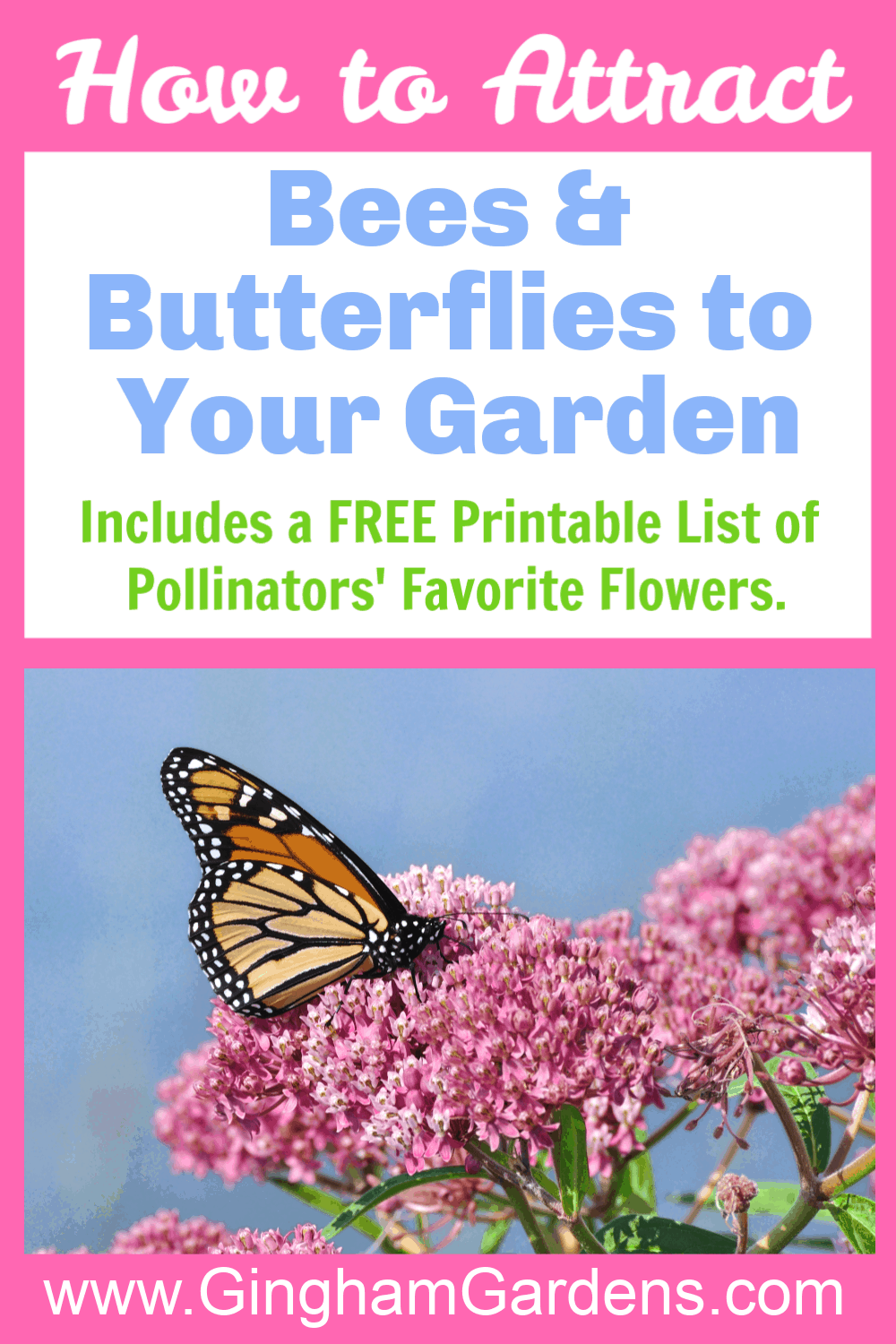 Image of a butterfly on a flower with text overlay - how to attract bees and butterflies to your garden