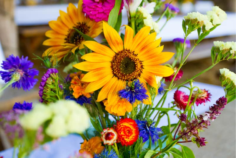 Image of a Fresh Flower Bouquet