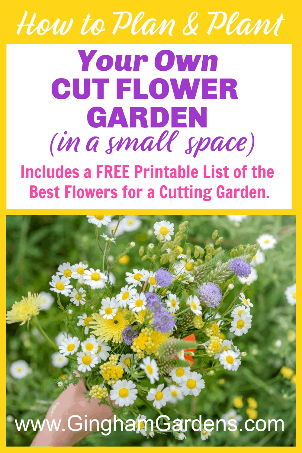 Image of Flowers with Text Overlay - How to Plan & Plant Your Own Cut Flower Garden