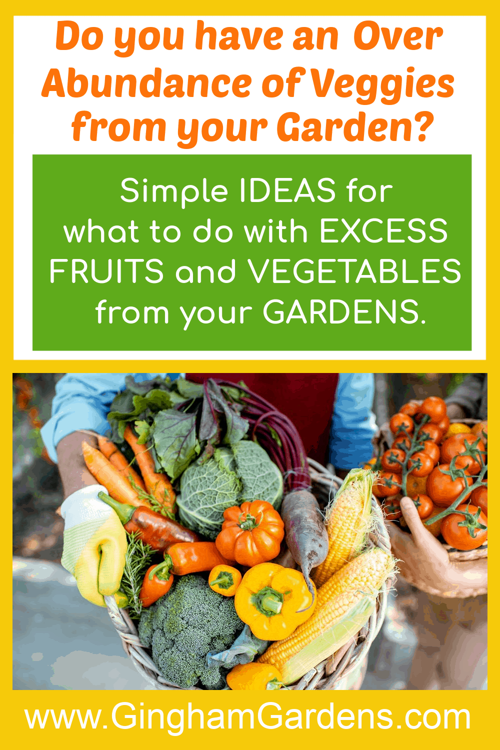 Image of Garden Produce with Text Overlay - What to do with excess fruits and vegetables from your gardens.