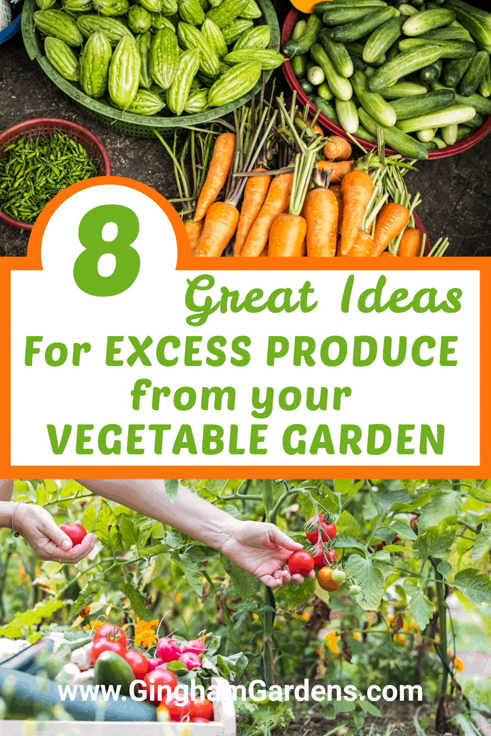 Image of garden vegetables with test overlay - 8 great ideas for Excess Produce from your vegetable garden