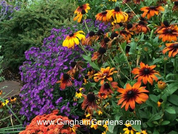 Image of a Fall Flower Garden