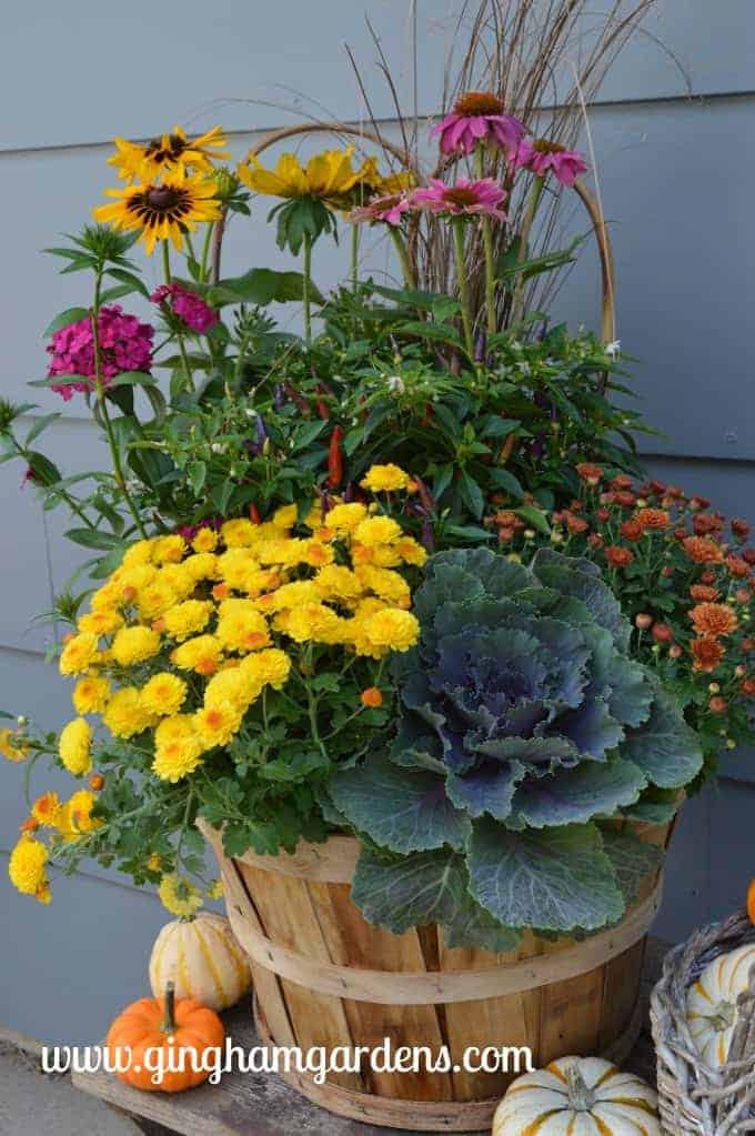 Image of a fall flower planter.