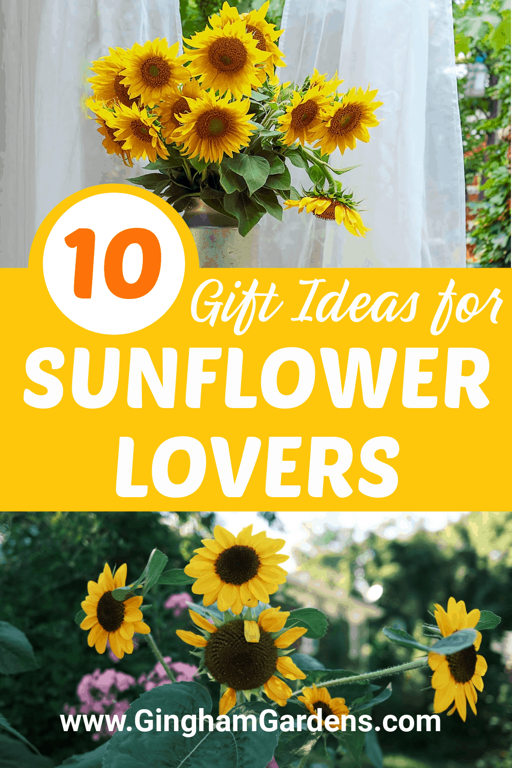 Images of Sunflowers with Text Overlay- 10 Gift Ideas for Sunflower Lovers