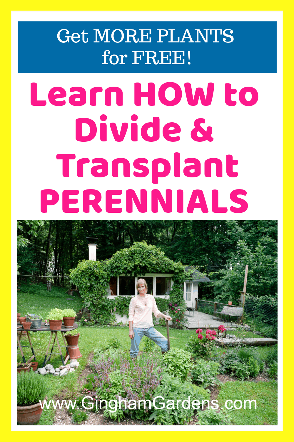 Image of a Gardener in a Garden with text overlay - Learn How to Divide & Transplant Perennials