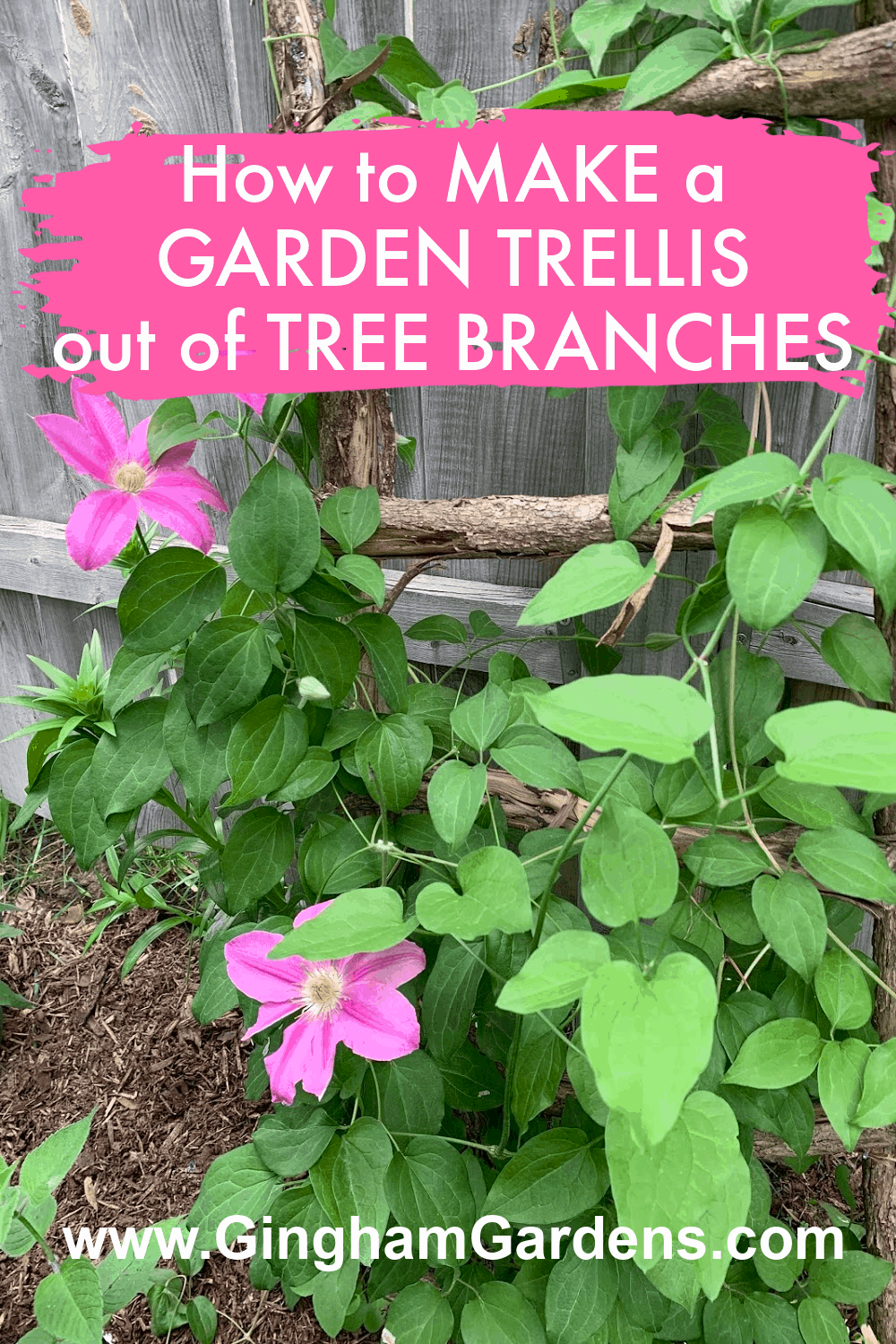 Image of a Garden Trellis with text overlay - How to Make a Garden Trellis out of Tree Branches