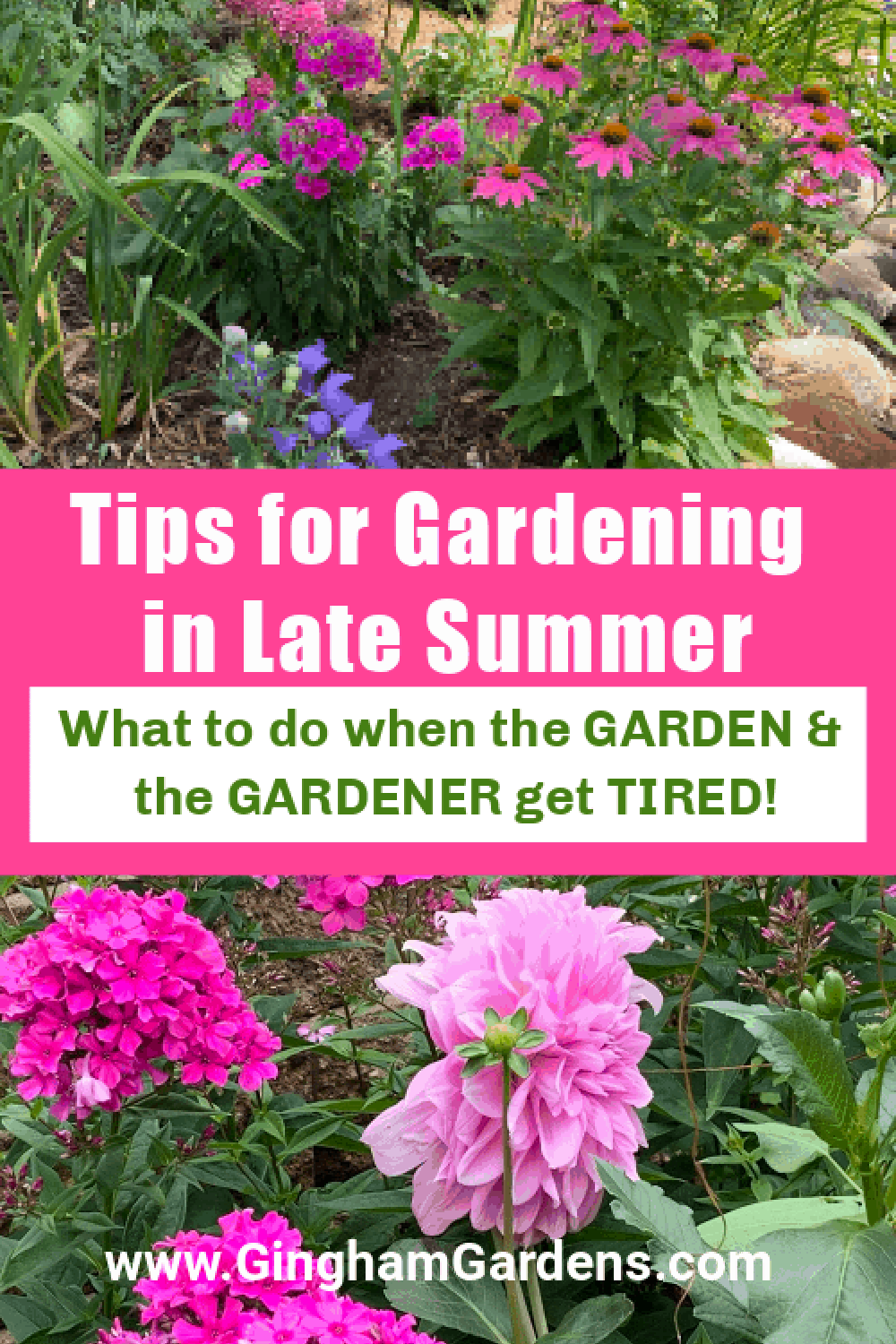 Images of Flower Gardens with Text Overlay - Tips for Gardening in Late Summer