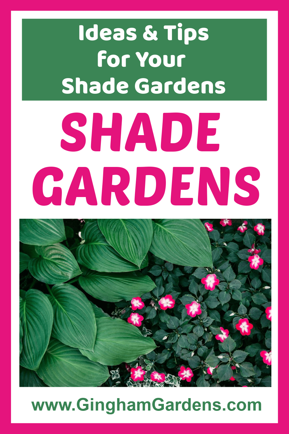 Image of Shade Garden Plants with Text Overlay - Ideas and Tips for your Shade Garden