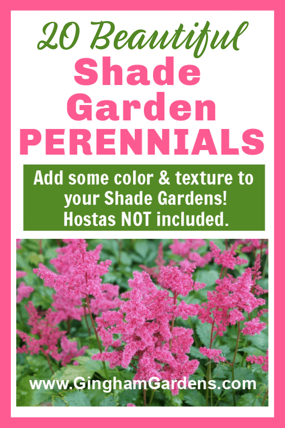Image of Astilbe with text overlay - 20 Beautiful Shade Garden Perennials