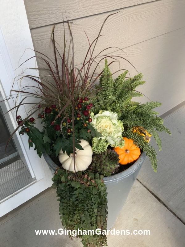 Image of a fall front porch planter