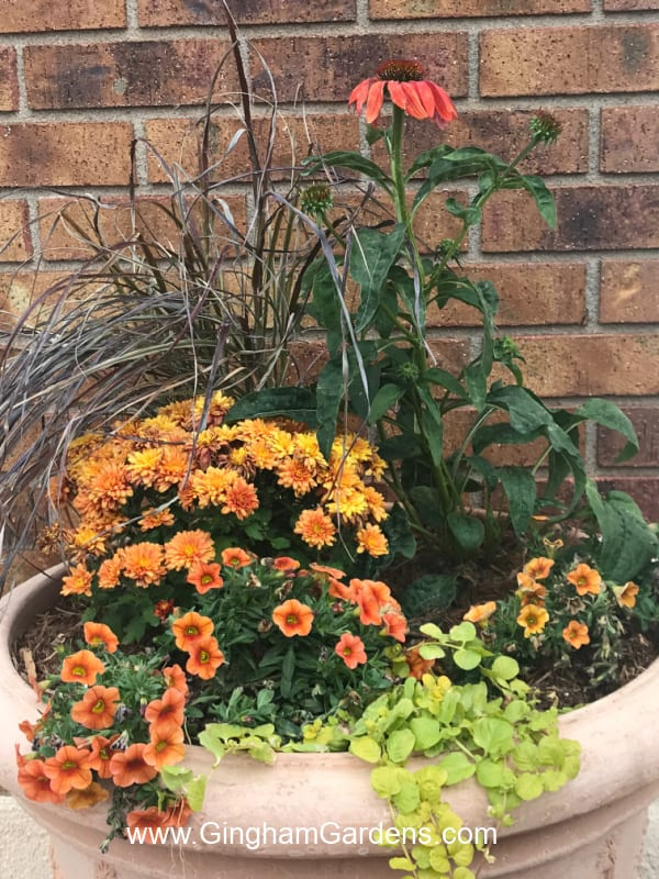 Image of a fall flower planter