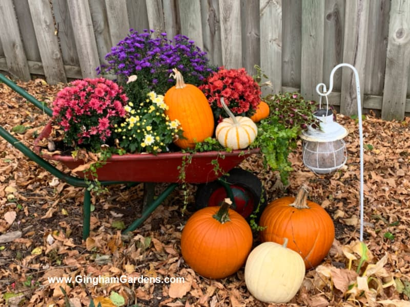Image of a wheelbarrow with pumpkins and flowers.