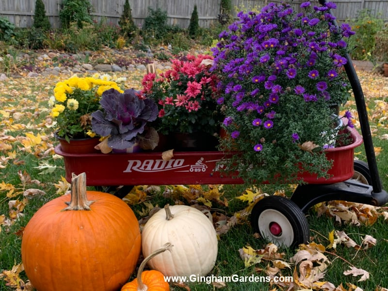 Image of a wagon with fall flowers and pumpkins