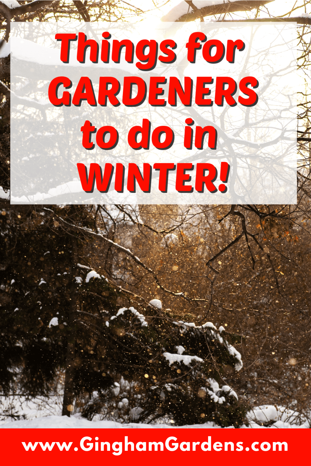 Image of Winter Scene with text overlay - Things for Gardeners to do in Winter