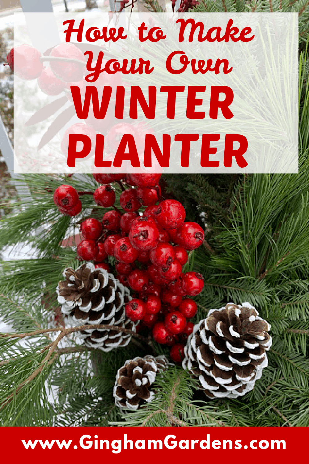 Image of evergreens pinecones and red berries with Text Overlay - How to Make a Winter Planter