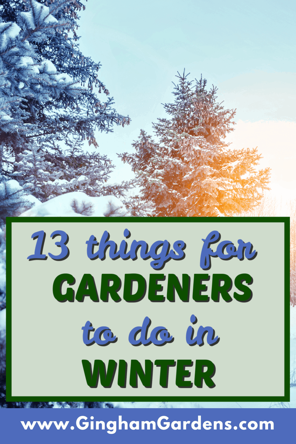 Image of Winter Trees with Text Overlay - 13 things for Gardeners to Do in Winter