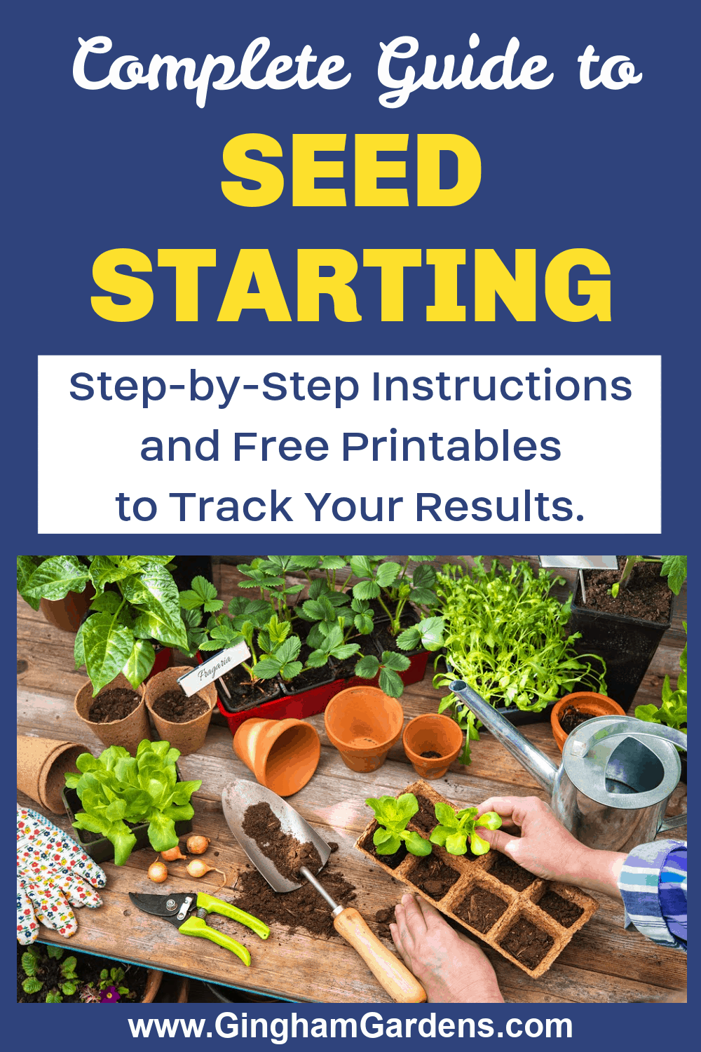 Image of Seedlings and Seed Starting Supplies with text overlay - Seed Starting