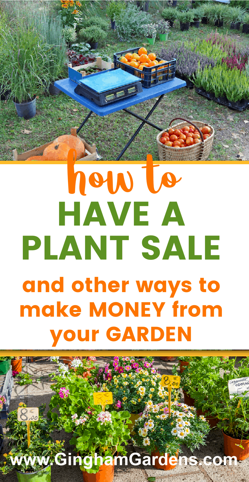 Images of Plant Sales with Text Overlay - How to Have a Plant Sale