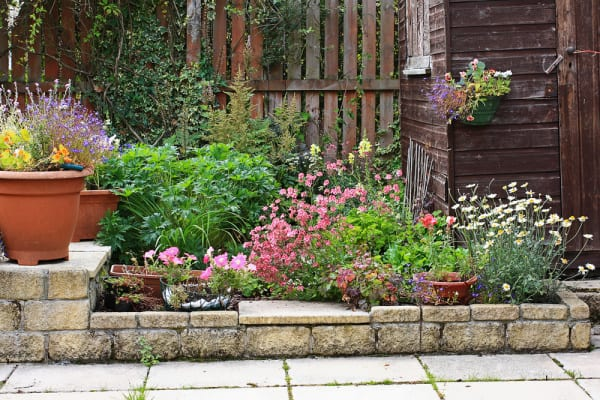 Image of a Small Flower Garden