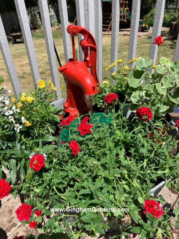 DIY Vintage Pump Fountain and Planter - adicionando as plantas