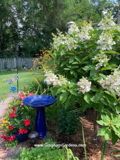 Image of a flower garden in a July Flower Garden Tour