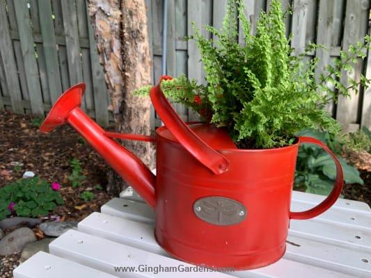 Rustic Garden Decor - Watering Can Planter