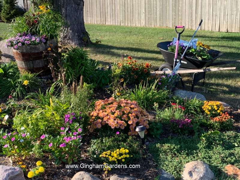 Garden in the Fall with wheelbarrow and gardening tools and supplies